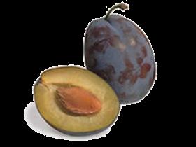La susina o prugna è un frutto con buccia liscia, di vari colori dal giallo  dorato al viola cupo, e polpa carnosa. Il susino, Prunus domestica, PlusPng.com  - Prugne PNG