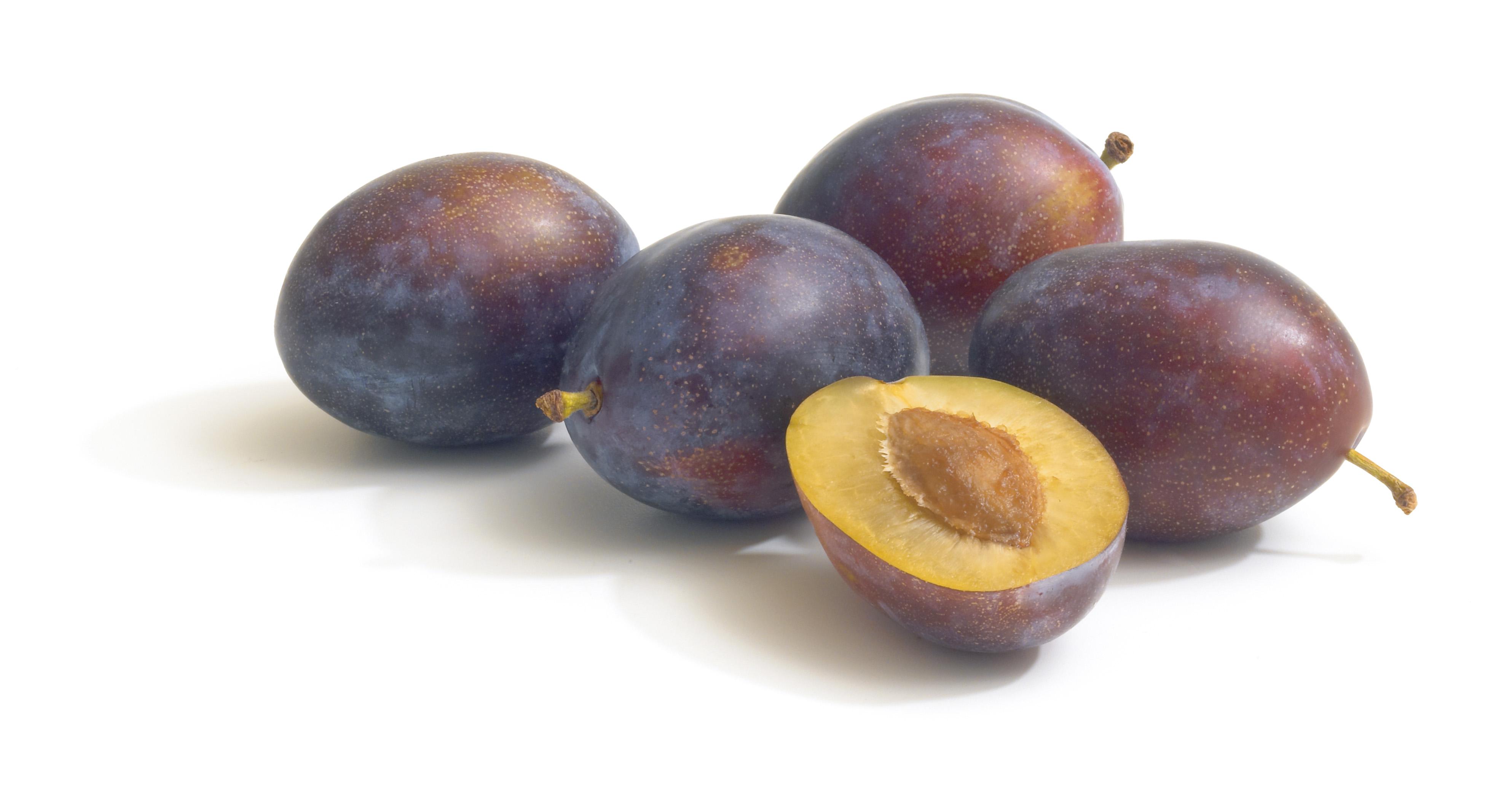 Nei nostri frutteti di Alba, Langhe e Roero, coltiviamo le prugne che  raccolte al punto giusto di maturazione vengono lavorate dopo poche ore, PlusPng.com  - Prugne PNG