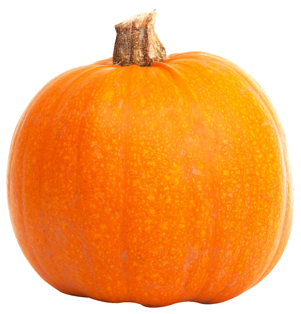 Fresh Orange Pumpkin PNG image - Pumpkin PNG