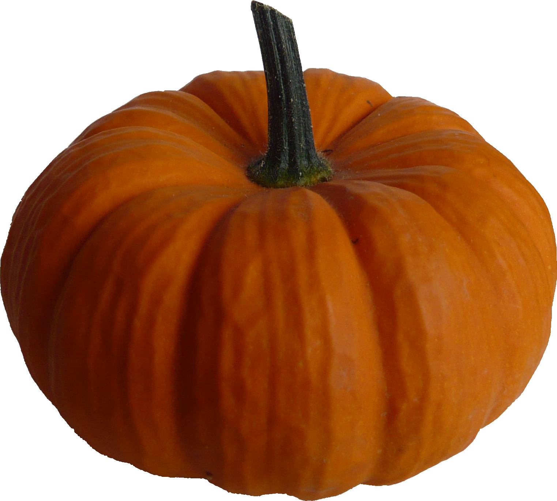 Real Pumpkin PNG Image - Pumpkin PNG