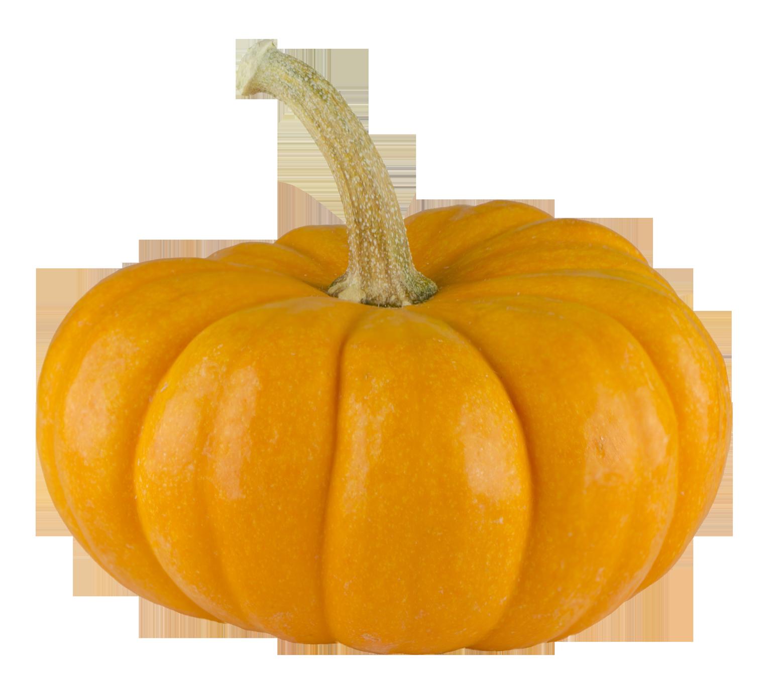 Real Pumpkin Transparent Background - Pumpkin PNG