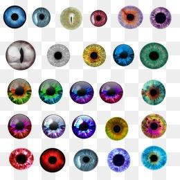 Pupil PNG HD - 130502
