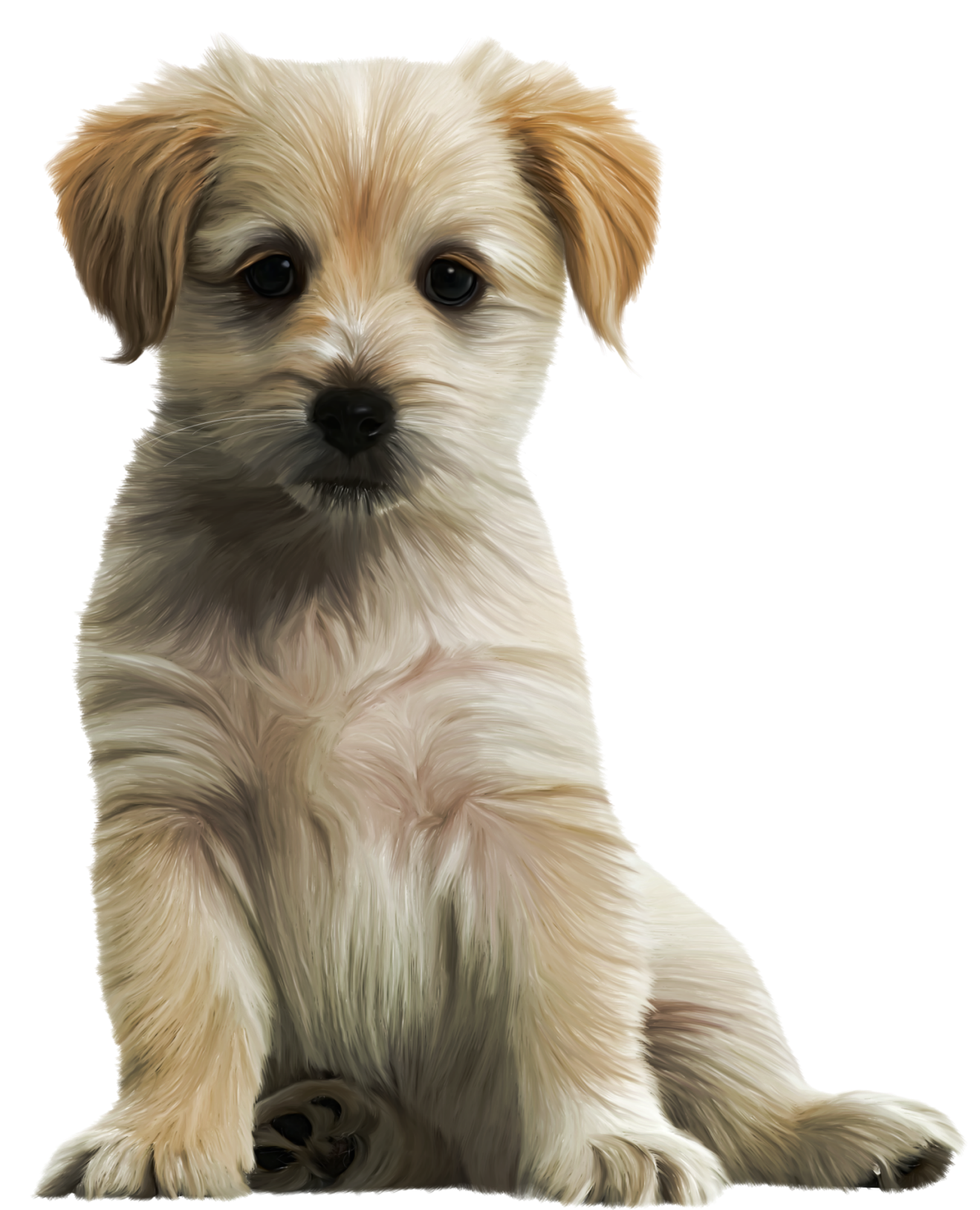 Cute Puppy Png Clipart Image Transparent Free Download - Puppy PNG HD