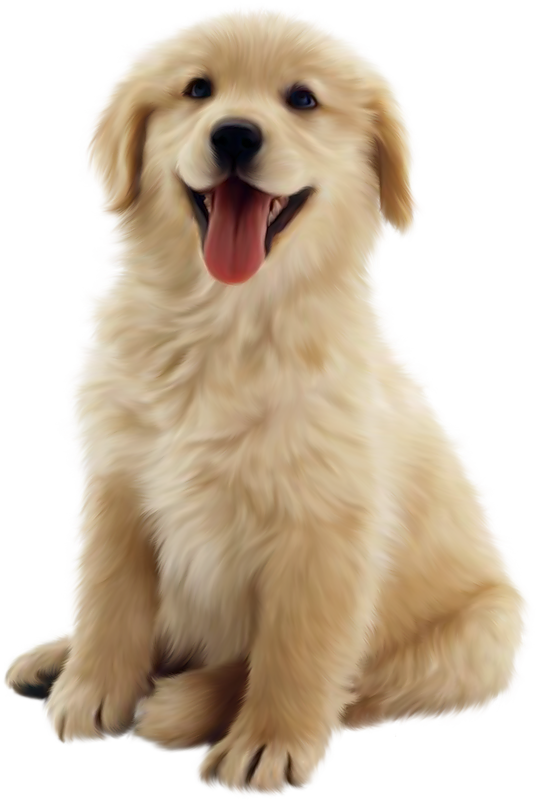Puppy PNG HD  - 121987