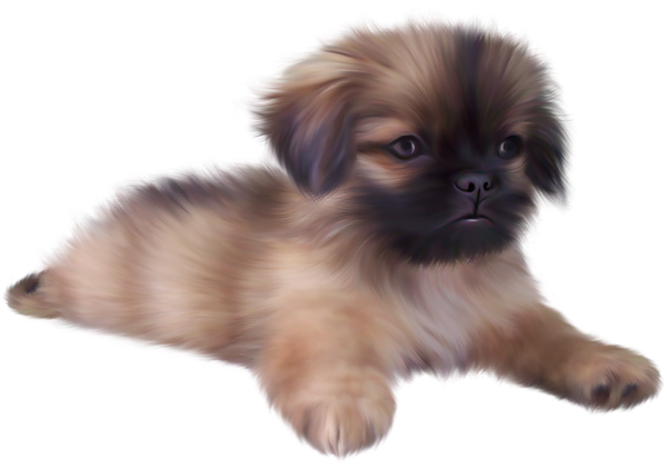 Puppy PNG File - Puppy PNG