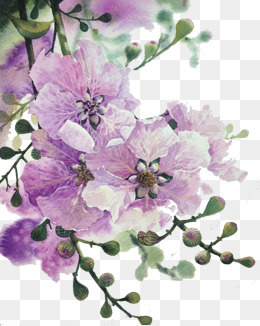 purple flowers - Purple And Pink Flowers PNG