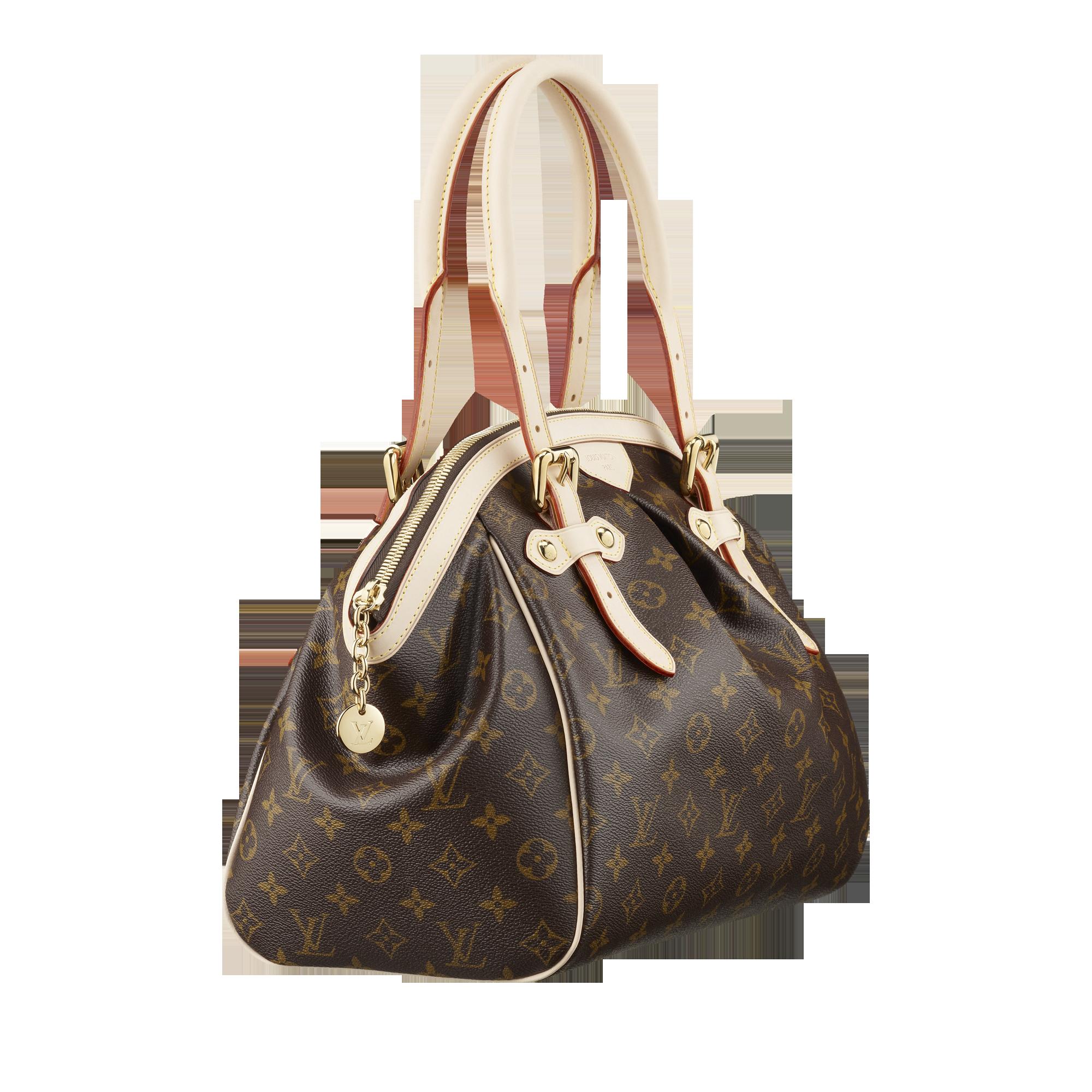 Louis Vuitton Women bag PNG image - Purse PNG