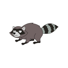 Decoration raccoon.png - Raccoon PNG