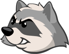 Raccoon PNG - 18239