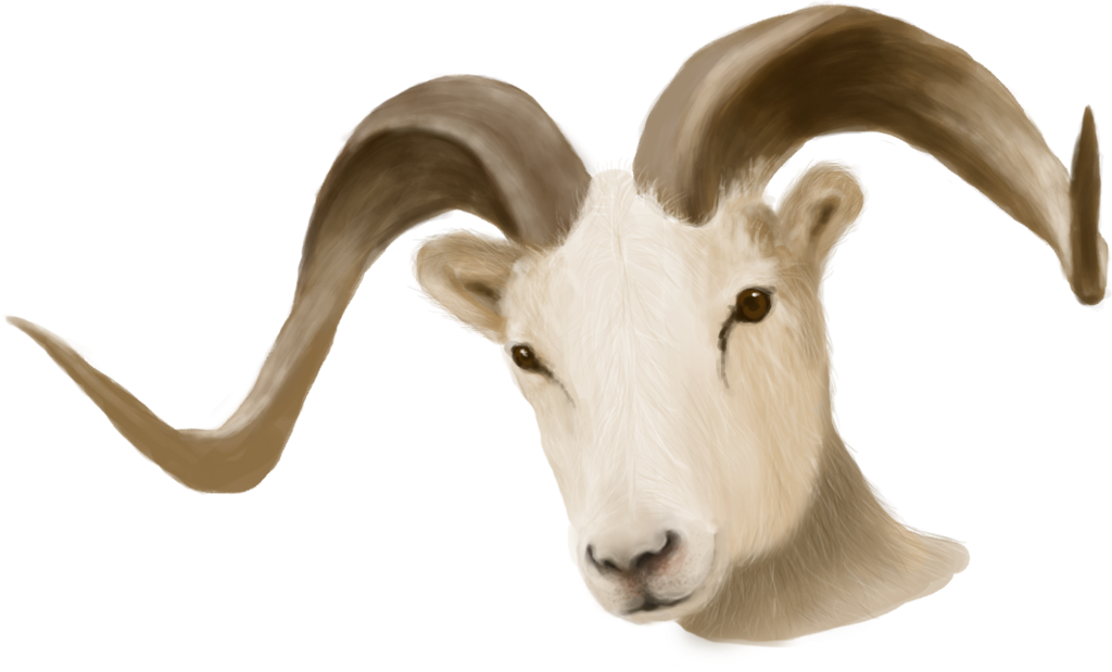 Painted Ram Head - unrestricted stock by KingaBritschgi PlusPng.com  - Ram Head PNG