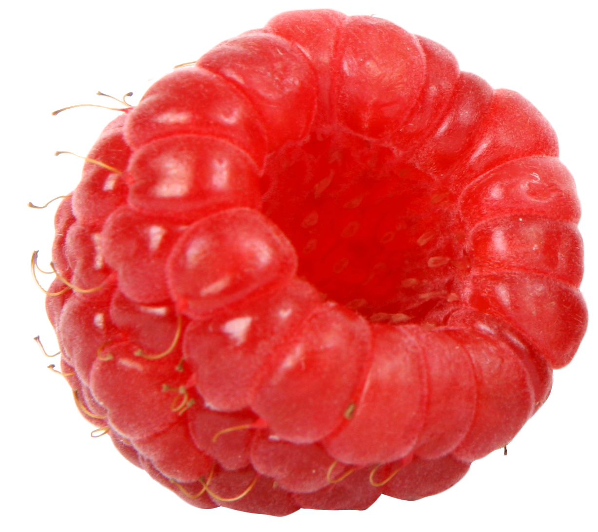 PlusPNG - Raspberry PNG