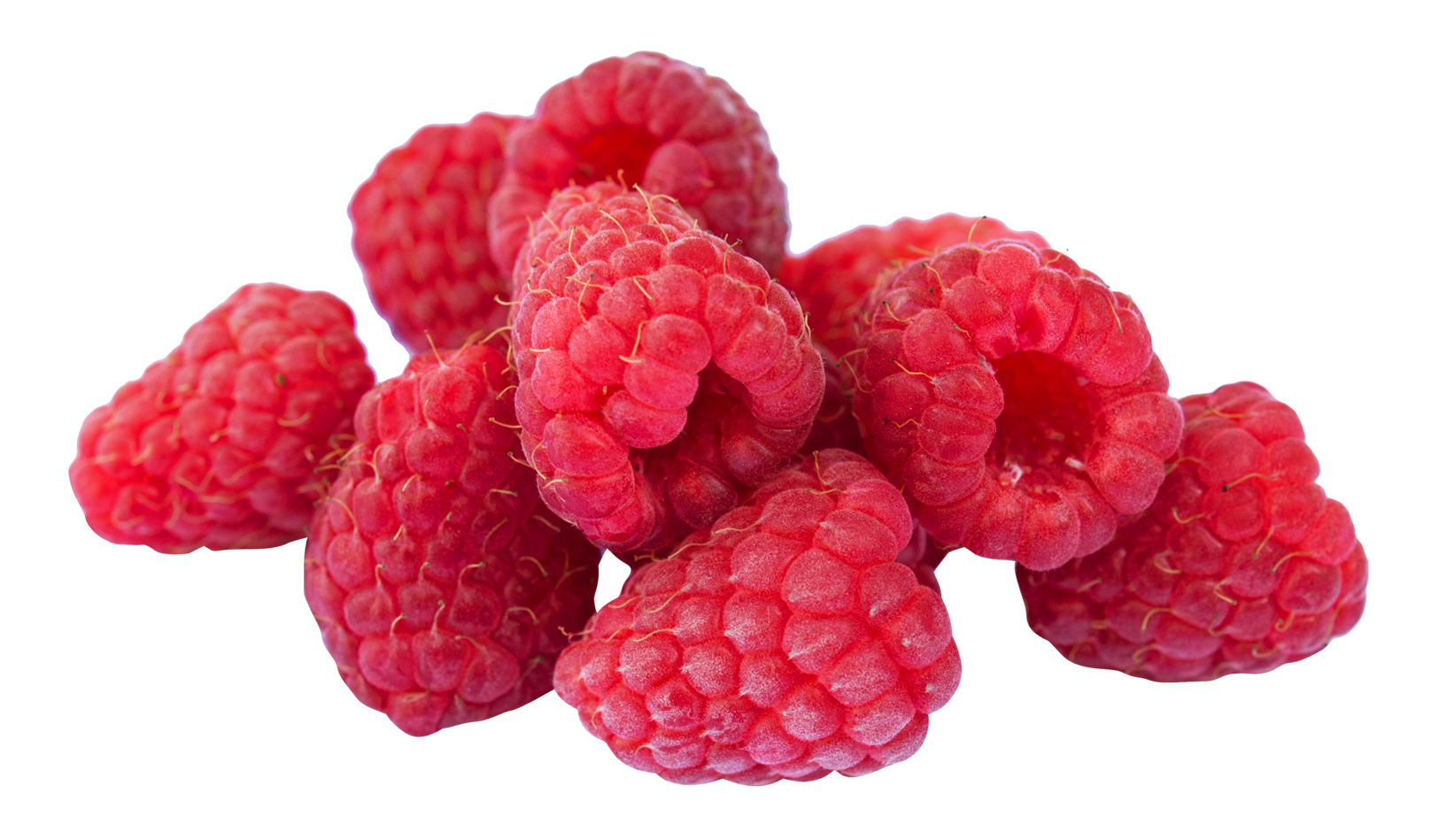 Raspberry PNG Clipart - Raspberry PNG