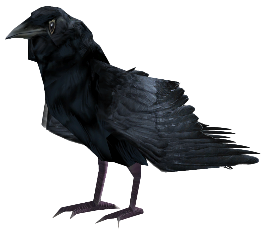 Raven PNG - 4085