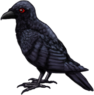Raven PNG - 4081