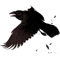 Raven PNG - 21278