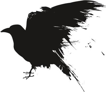 Raven PNG - 4071