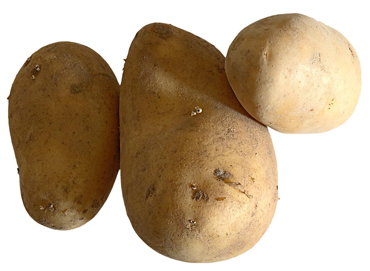 Potato PNG - 7094