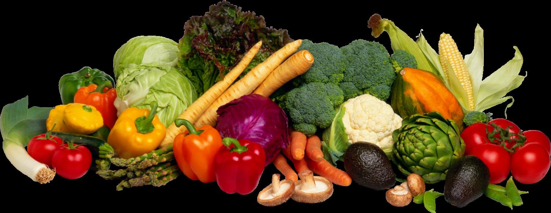 Skin Foods Best