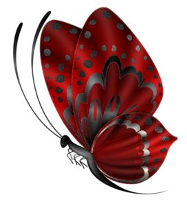BUTTERFLY - Red And Black Butterfly PNG