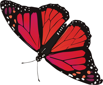 butterfly png | butterfly.png - Red And Black Butterfly PNG