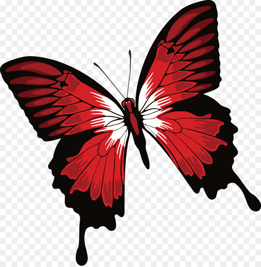 Monarch butterfly Health - Butterfly decorative design - Red And Black Butterfly PNG