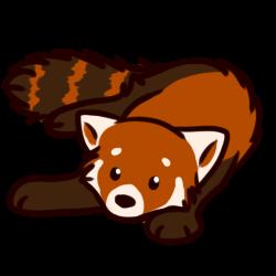Red Panda PNG - 9378