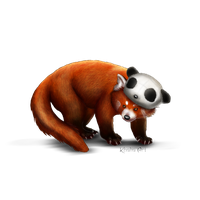 Red Panda Png Picture PNG Image - Red Panda PNG