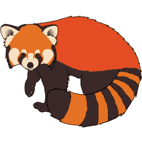 red panda/tanuki/raccoon. Theyu0027re all similar animals what with having  masks and ringed tails so here you are. red panda fire q4e5MEj.png - Red Panda PNG