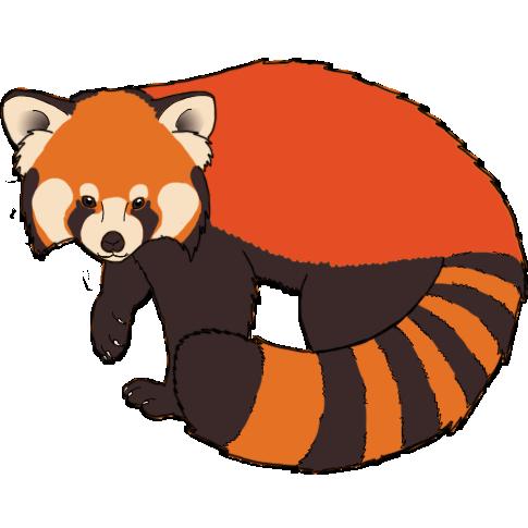 Red Panda PNG - 9387