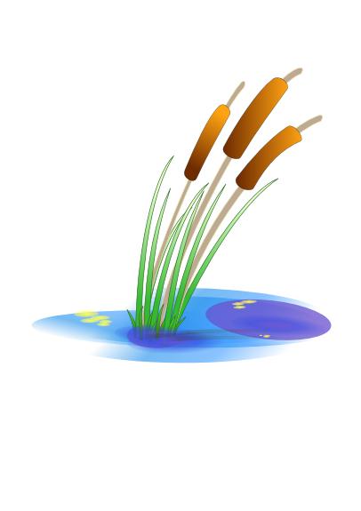 Download pngwebpjpg. - Reeds PNG