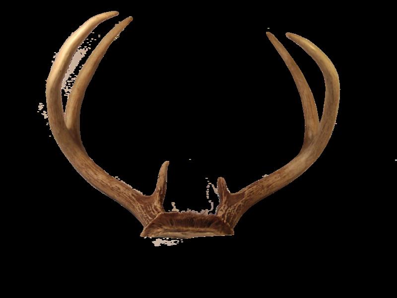 Transparent Deer Antlers PNG - Reindeer Antlers PNG