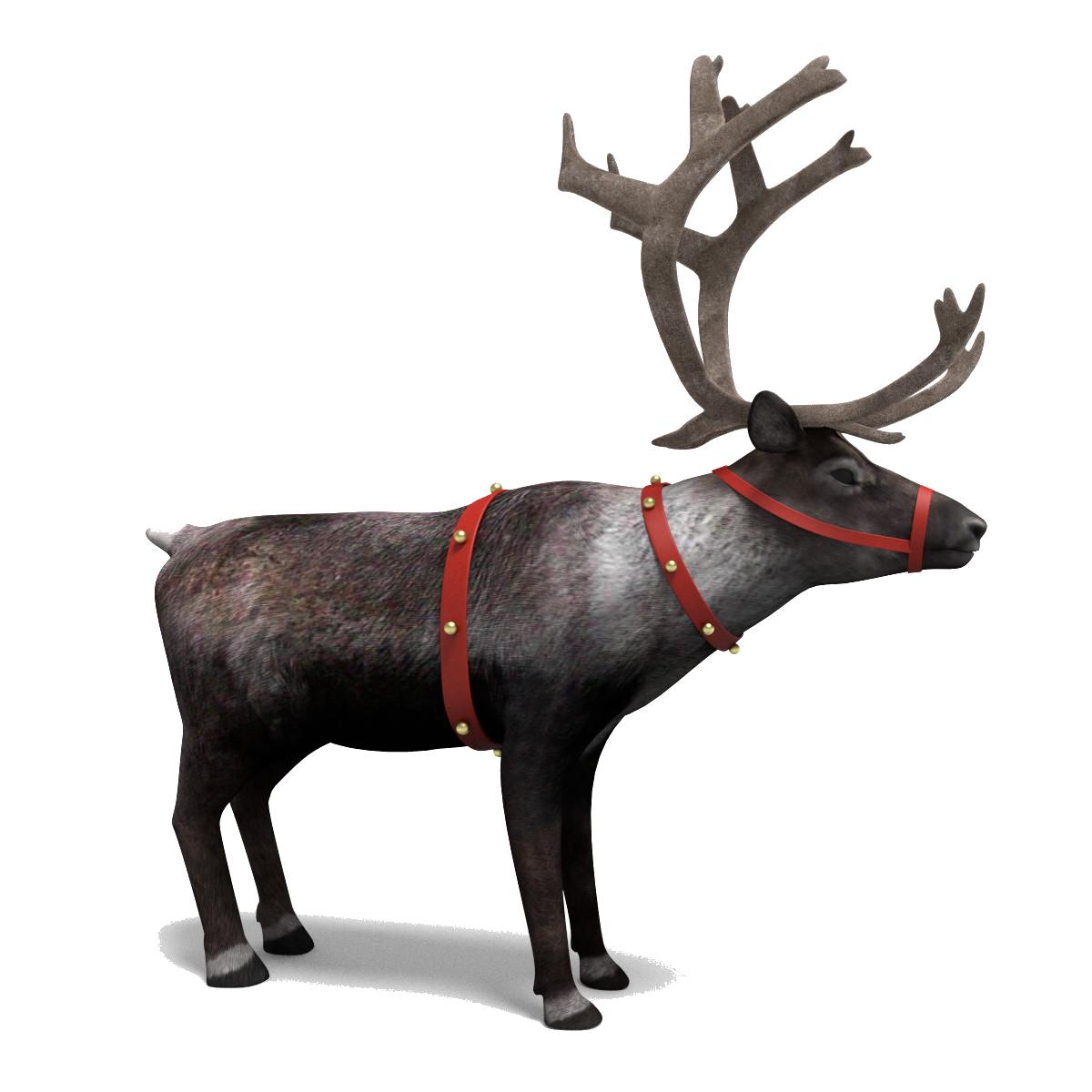 Reindeer PNG - 26221