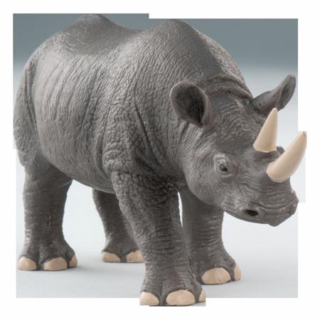 Rhino PNG - Rhinoceros PNG