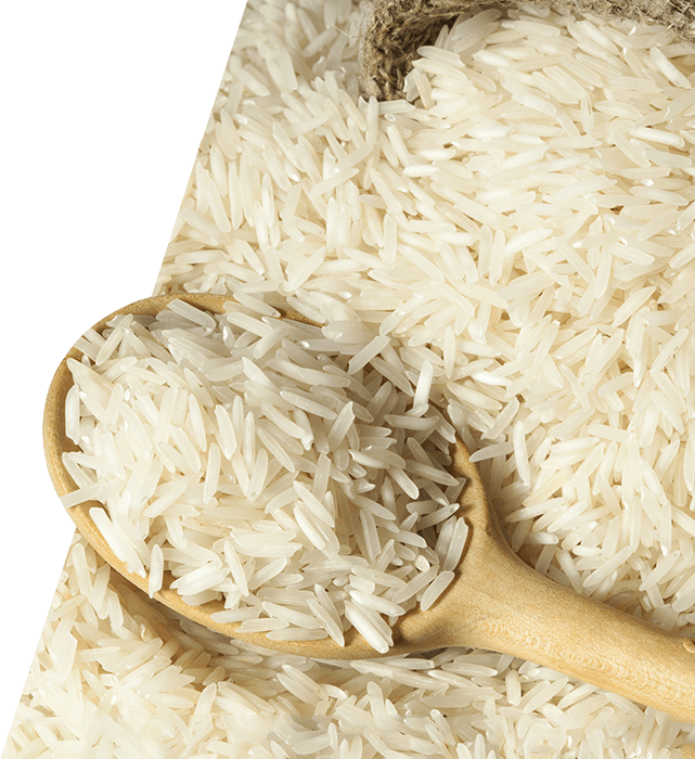 Rice PNG HD - Rice HD PNG