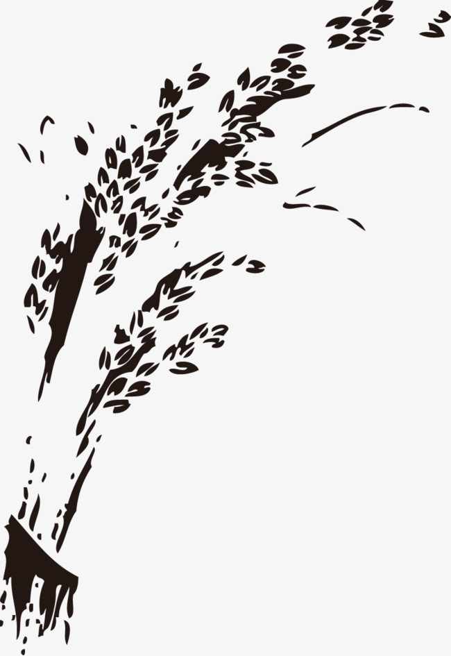 hand-painted rice, Rice, Paddy, Rice PNG and Vector - Rice Paddy PNG Black And White