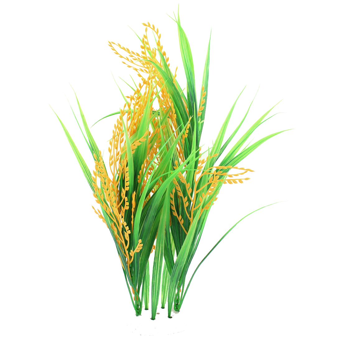 Rice PNG - 27029