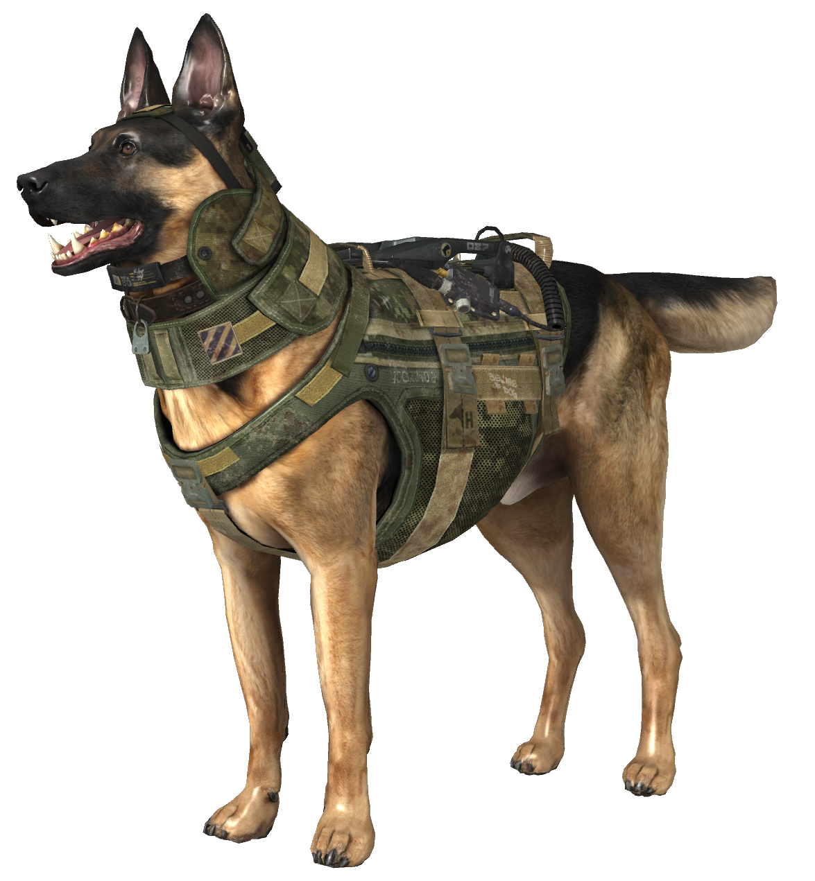 Image - Riley model CoDG.png | Call of Duty Wiki | FANDOM powered by Wikia - Riley PNG