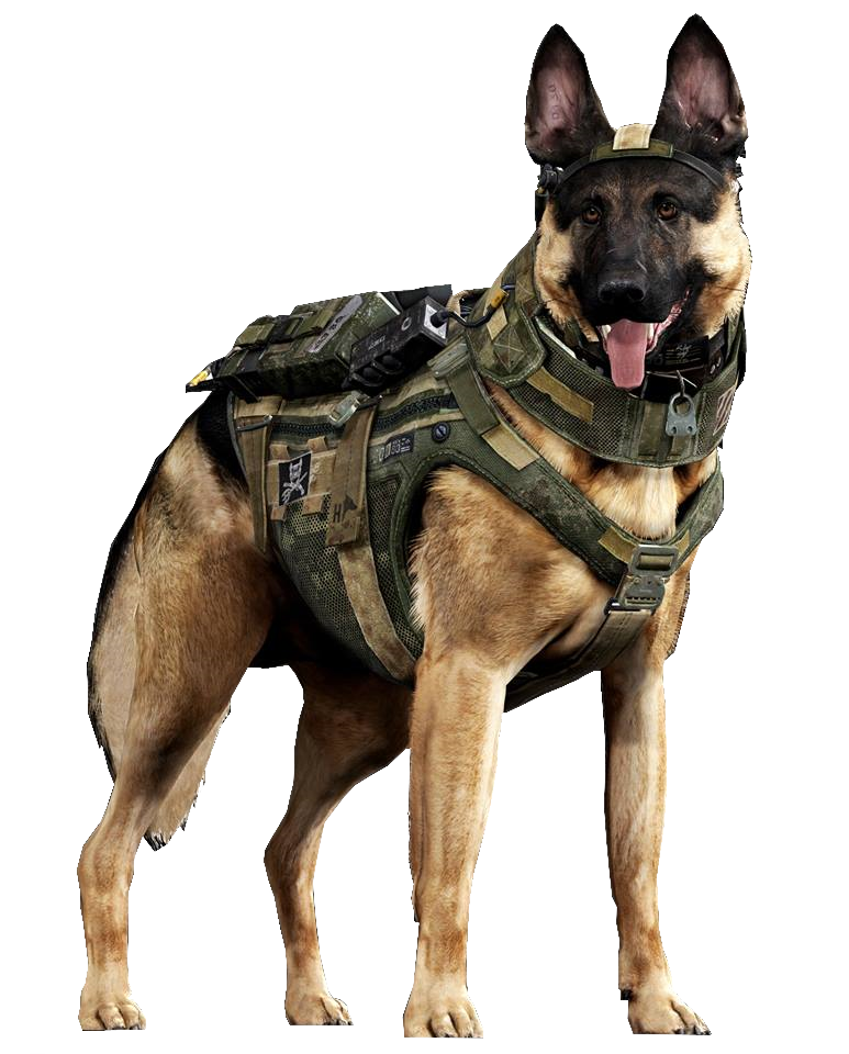 Image - Riley render CoDG.png | Call of Duty Wiki | FANDOM powered by Wikia - Riley PNG