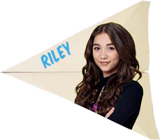 Riley-plane.png