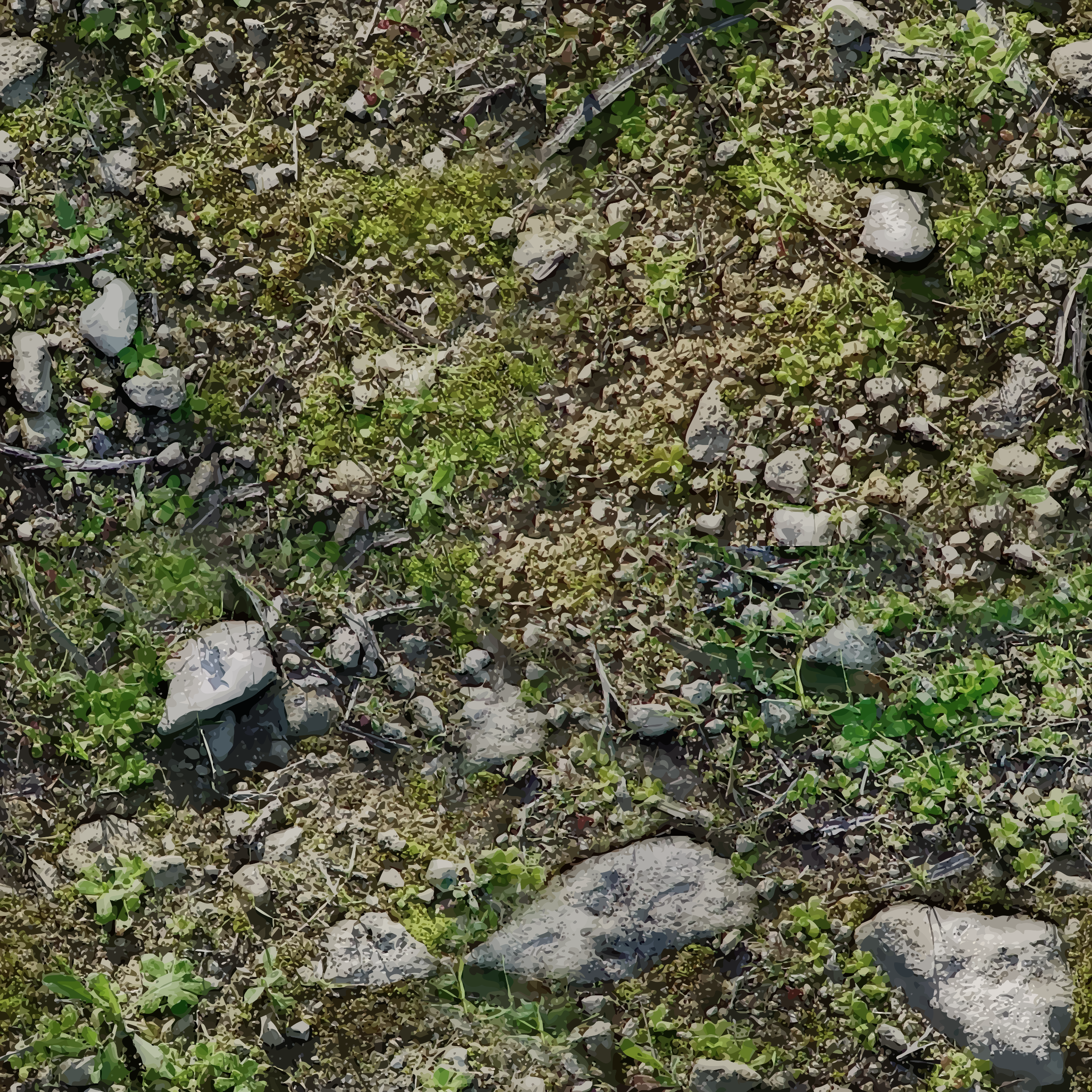 BIG IMAGE (PNG) - Rocky Soil PNG