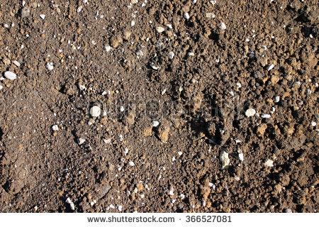 Rocky Soil PNG - 58348
