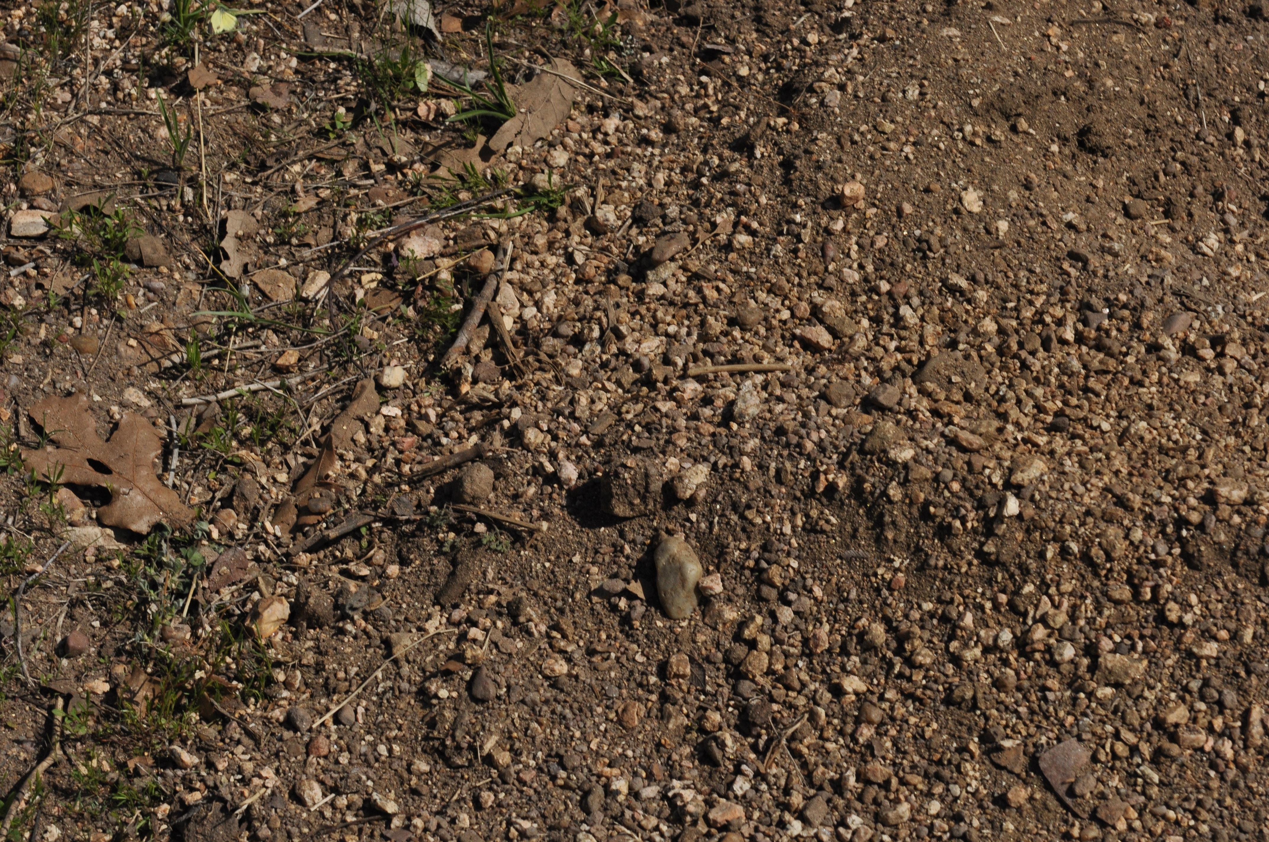 Rocky Soil PNG - 58350