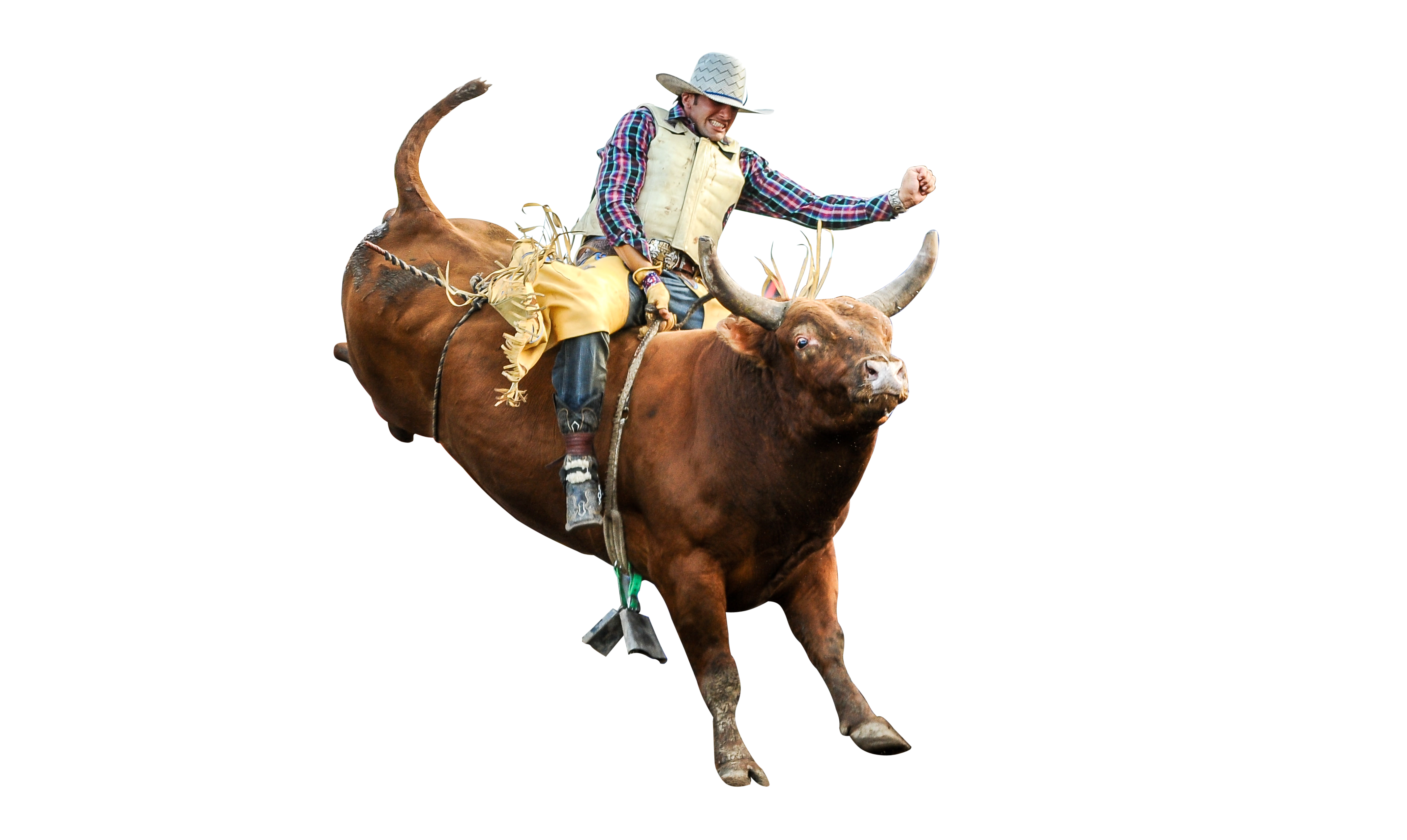 Bullriding HD Background - Rodeo PNG HD