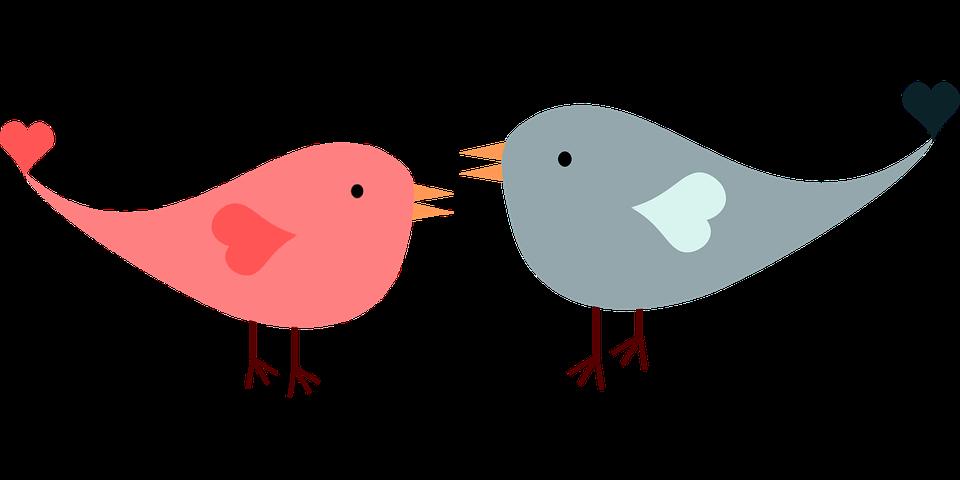 Love, Birds, Lovebirds, Heart, Romance, Romantic - Romance PNG