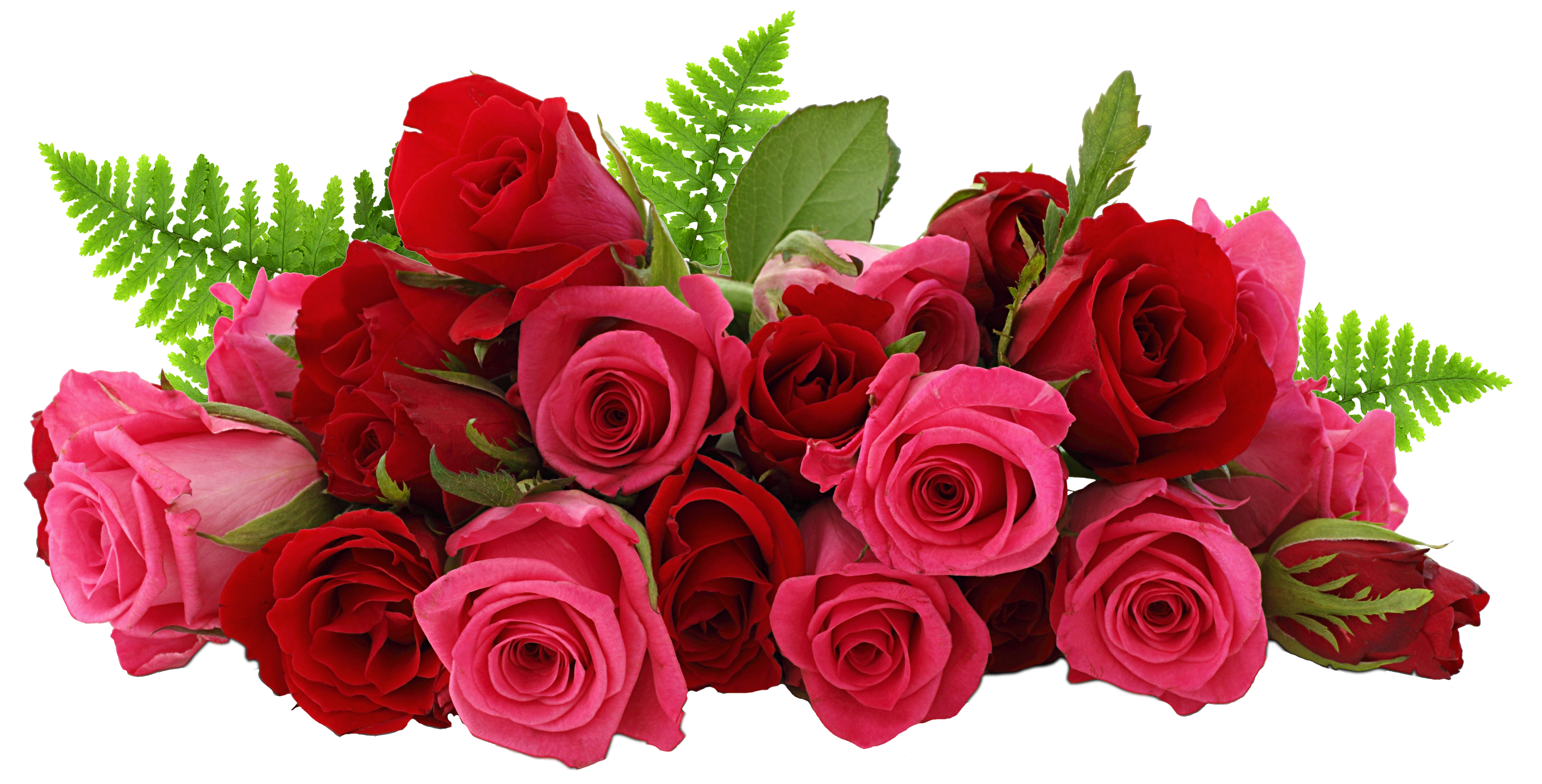Wedding Roses Png image #39860 - Rose PNG - Rose HD PNG