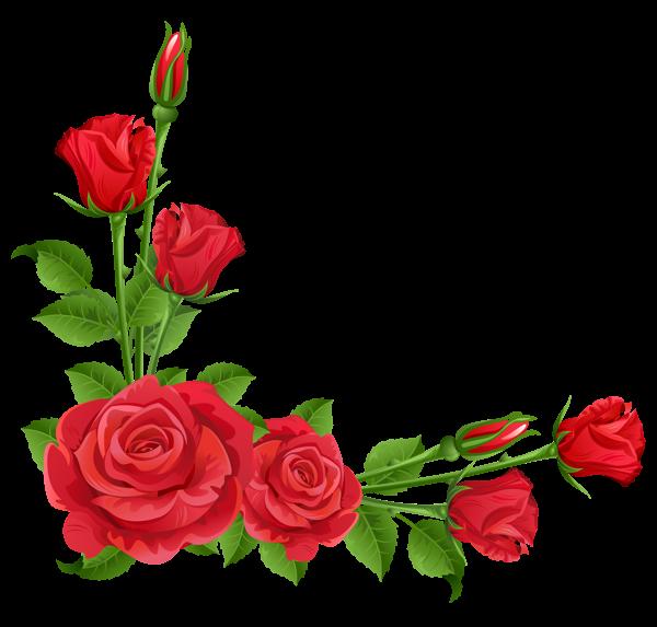 Rose Vine PNG HD - 144669