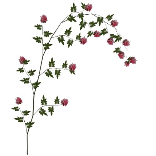 Rose Vine PNG HD - 144666
