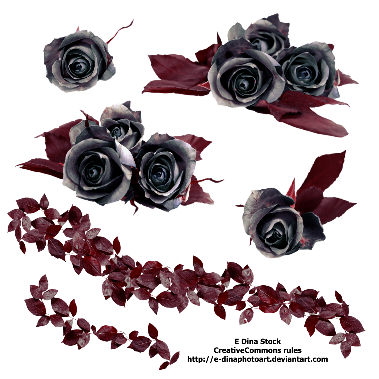 Rose Vine PNG HD - 144674