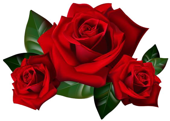 Rose Vine PNG HD - 144667
