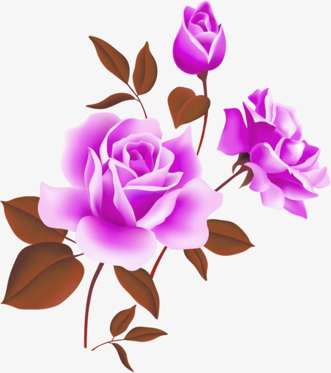 Rose Vine PNG HD - 144672